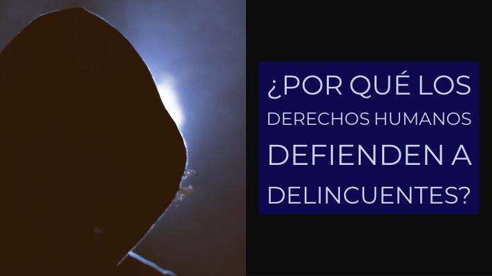 Delincuentes DDHH